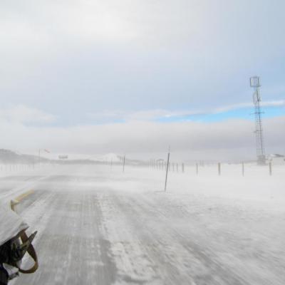 Cerle Artique 2014